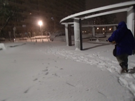 雪の帰り道 (12)
