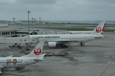okinawa038.jpg