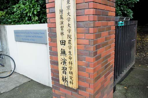 Todai2014-1.jpg