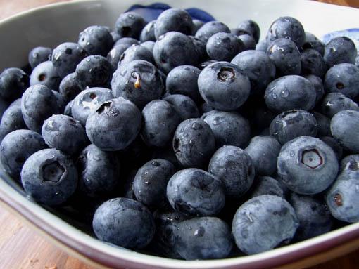 blueberry02.jpg