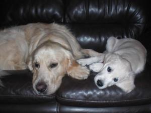 ソファーの2人