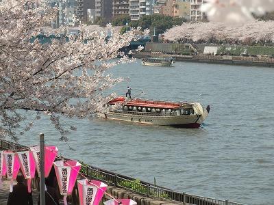 墨堤から見た隅田川