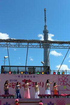sakura-c1.jpg