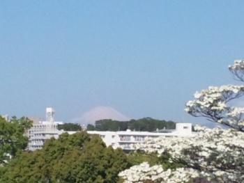 SH3I1408富士山