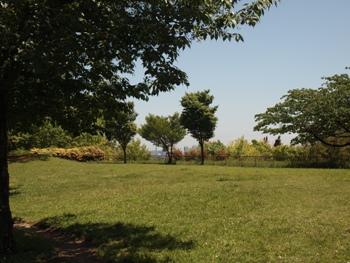 P5032045公園