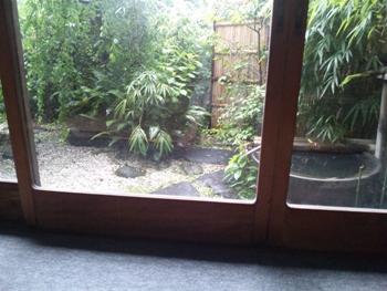 SH3I1541雨降り