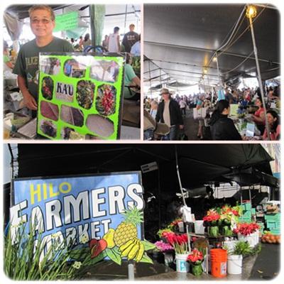 Hilo Farmaers Market
