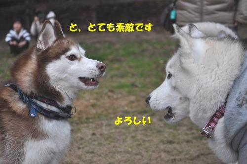 2012012930.jpg