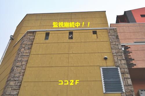 2012031132.jpg