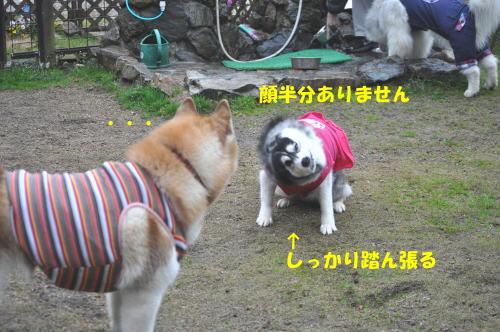 2012031811.jpg
