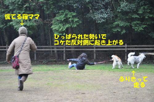 2012031824.jpg