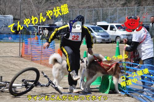 2012040831.jpg