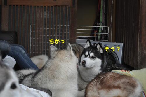 2012042919.jpg