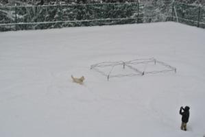2013年3月ひるがの橇練習 177