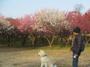 2013年3月日進カフェ&大高ラン 039
