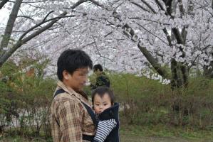 2013年3月お花見 153