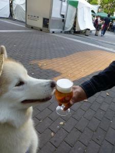 2013年GW清里・ビール祭 019