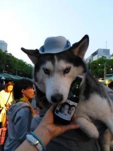 2013年GW清里・ビール祭 098