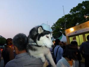 2013年GW清里・ビール祭 097