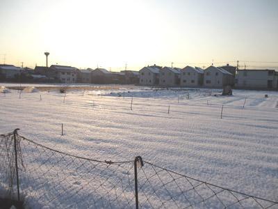雪の翌々日