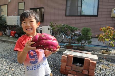 巨大なサツマイモ