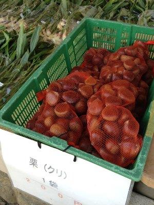 20120905栗