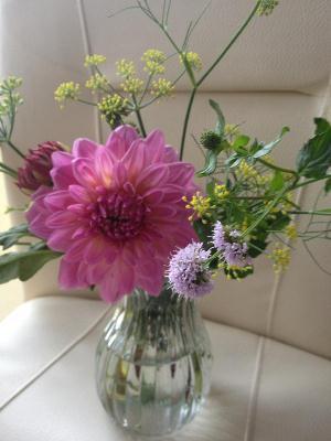 20121005flower.jpg