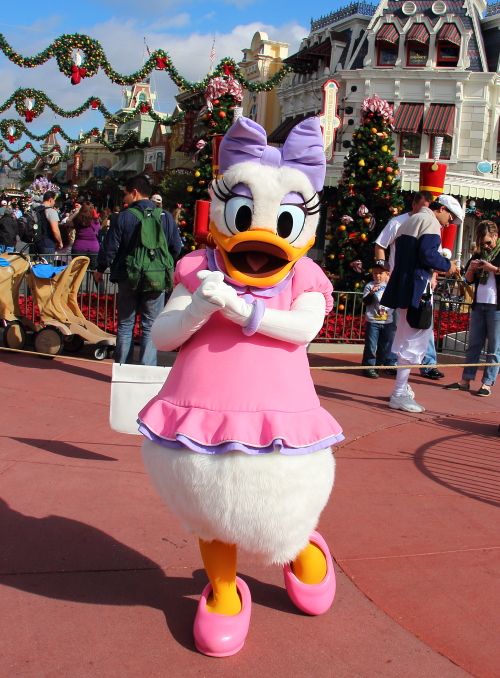 2011/11/25-12/1*WDWレポ ~5日目~2