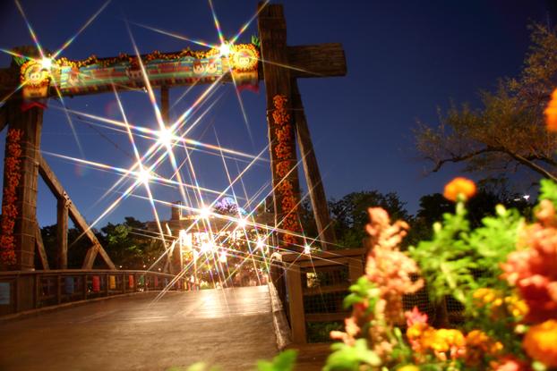 スノークロスの夜景と花火1