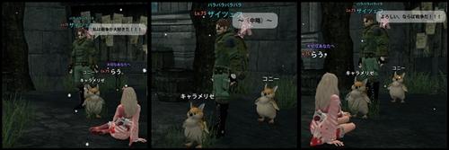 2013_2_12_2.jpg