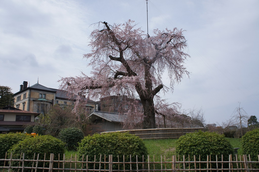 kyoto13_04.jpg