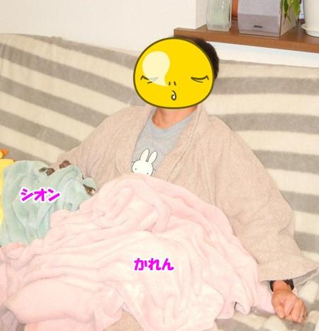 DSCN1612_20121118223115.jpg