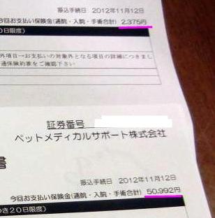 DSCN1616_20121117222158.jpg