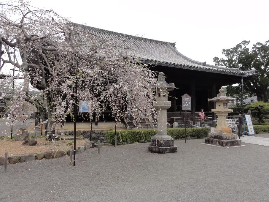 ブログ道成寺
