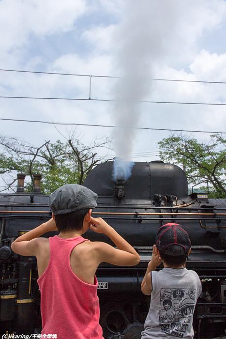 秩父鉄道 パレオエクスプレス