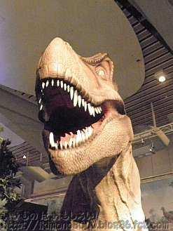 毛が無いティラノサウルスのATC