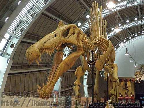 京セラドームのIWO的見どころスピノサウルス全身骨格模型