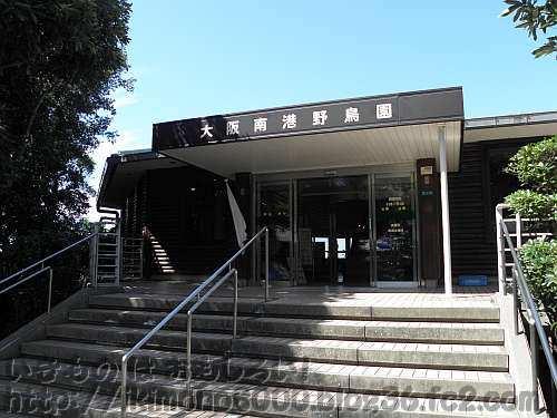 大阪南港野鳥園の展望塔