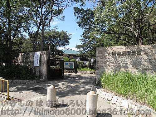 大阪南港野鳥園の入り口