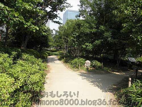 都会の中のビオトープの新梅田シティの新・里山
