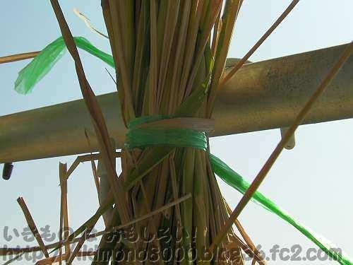 組み立ての必要のない稲架(はさ) 別名「物干し竿」