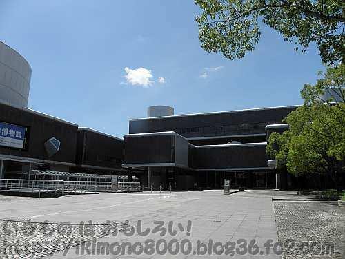 万博記念公園の国立民族学博物館通称「民博」