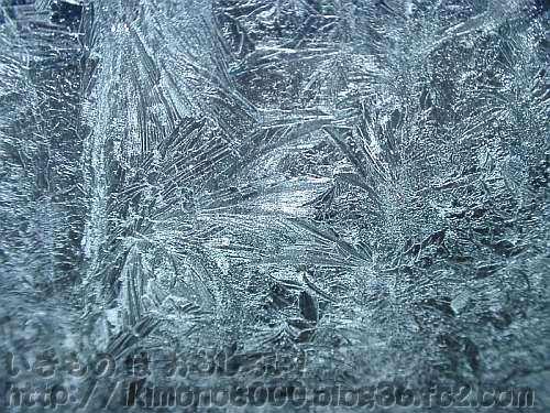 窓ガラスについた霜