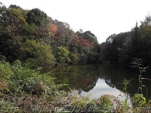 水辺の里の南浦谷池