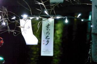 110814kyounotanabata009.jpg