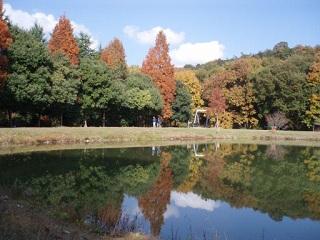 20091126三木山池に映る紅葉1
