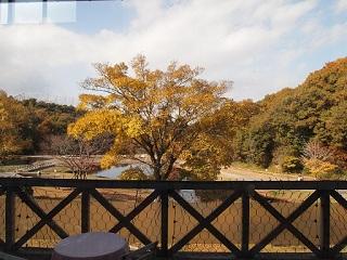三木山森林公園レストラン紅葉