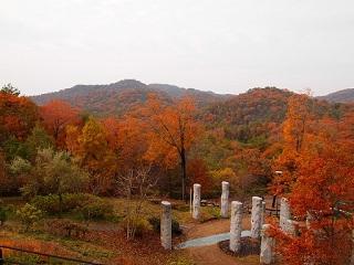 有馬富士公園紅葉