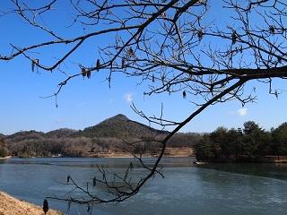 有馬富士公園2月池