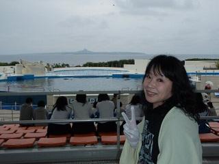 20100514美ら海水族館イルカ